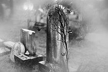 220px-Union_Graveyard_III.jpg